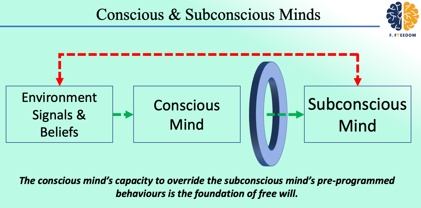 Conscious and Subconscious Minds